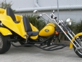 Yellow-Dom-2